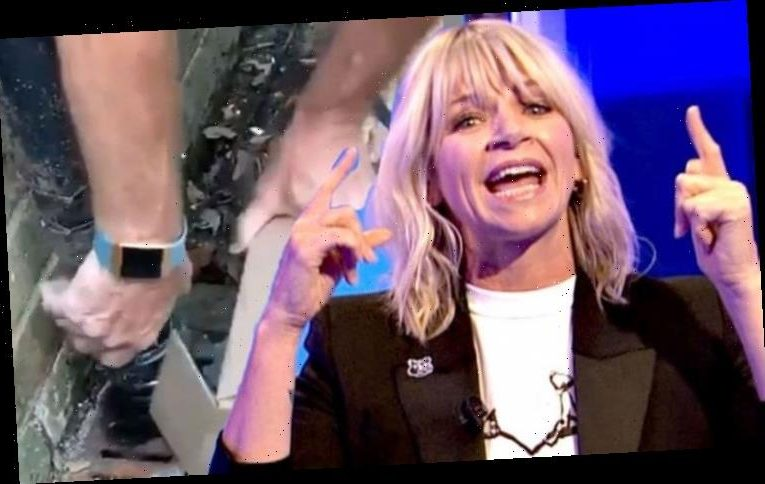 Zoe Ball: Radio 2 favourite in lockdown 'drama' with family 'S**t! Where's it gone?'