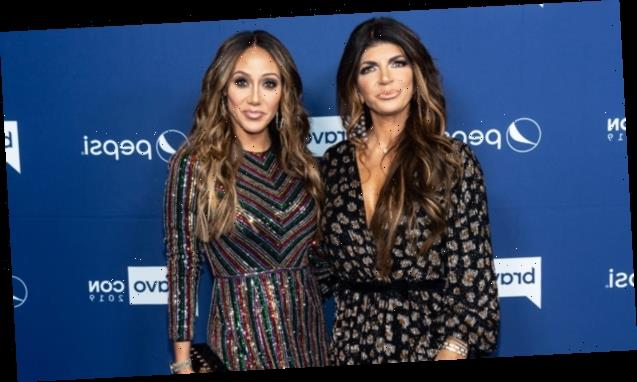 'RHONJ' Melissa Gorga 'Still Has Bumps' With Teresa Giudice As They Prep For 4th Of July Party
