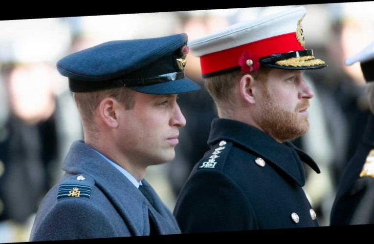 New Book About Prince William and Harry's Rift Reveals 'Painful' Details