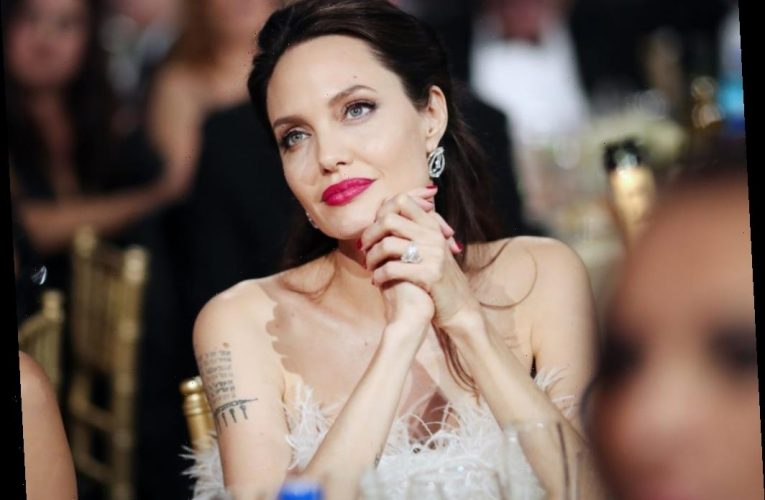 Licensed Pilot Angelina Jolie Bought a Shockingly Modest Plane After Getting Her Pilot's License