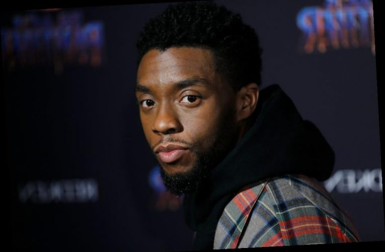 Chris Evans, Mark Ruffalo, and More Marvel Actors React to the Death of 'Black Panther' Star Chadwick Boseman