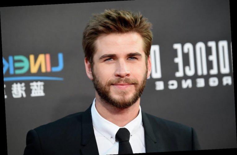 This Update On Liam Hemsworth & Gabriella Brooks' Relationship Is So Good