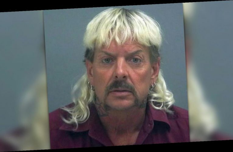 'Tiger King' star Joe Exotic pleads for Trump pardon in personal letters: 'Be my hero'