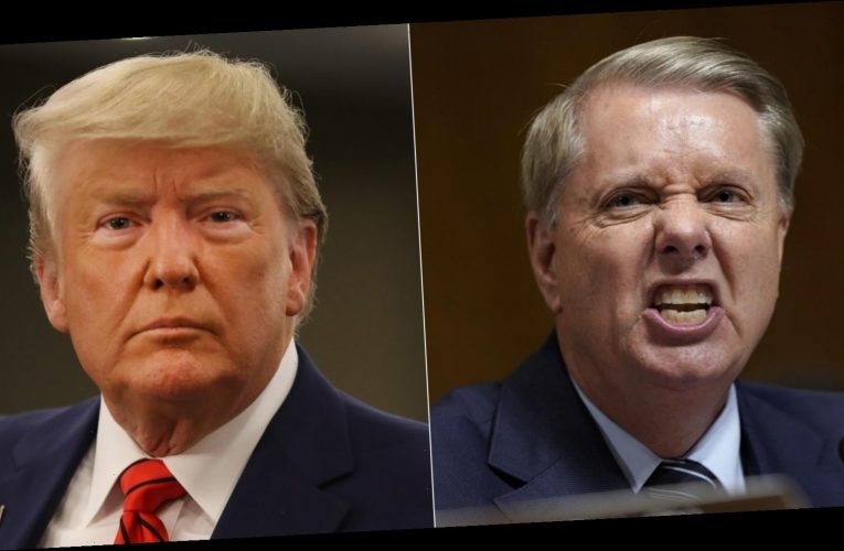 The truth about Trump's relationship with Lindsey Graham