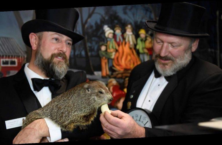Groundhog Day 2021: Did Punxsutawney Phil See His Shadow?