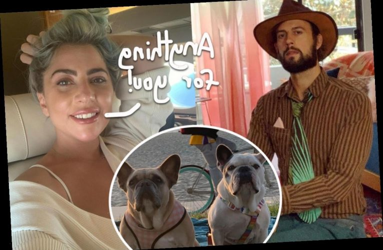Lady GaGa Will Pay Dog Walker Ryan Fischer's Nearly $100K In Medical Bills!