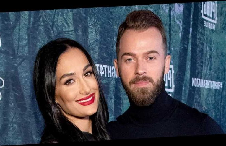 Nikki Bella: Artem and I Have 'No Problems' After Going to Couples Therapy