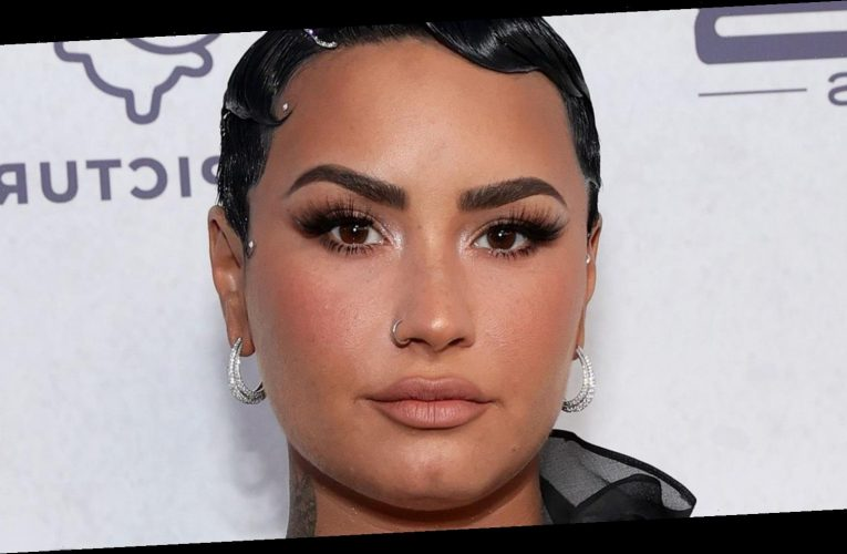 Demi Lovato Shares Her Thoughts On Having Children