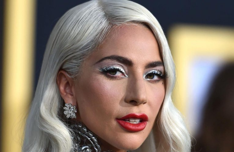 The Latest Developments In The Lady Gaga Dognapping Case