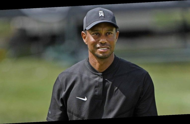 Tiger Woods' Cause of Crash Determined, But Findings Won't Be Released