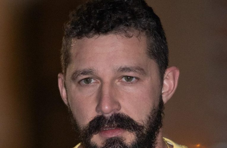 Shia LaBeouf Charged with Battery, Petty Theft Stemming from June Incident