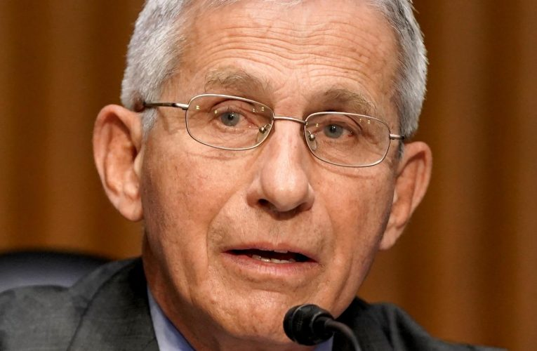How Does Joe Biden Really Feel About Dr. Fauci?