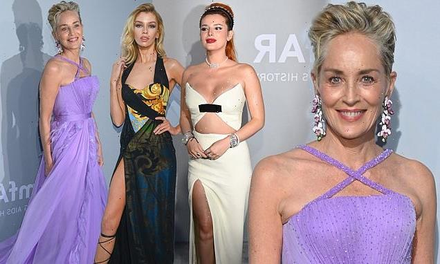 The stars step out for the 27th amfAR Gala during Cannes Film Festival