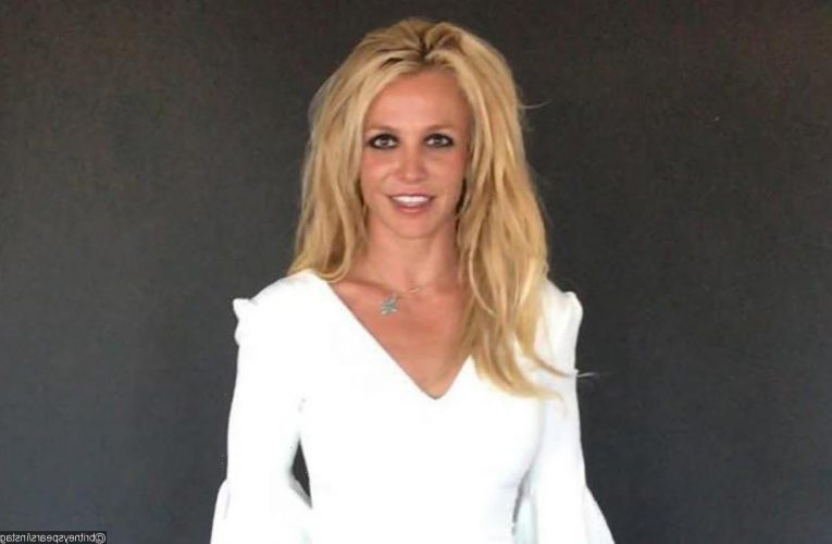 Britney Spears Fans Liken Her Story of Getting Locked in Bathroom to Conservatorship Battle