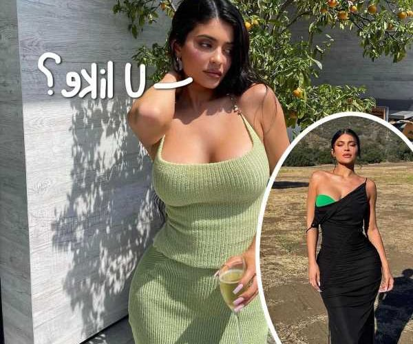 Kylie Jenner Shares Jaw-Dropping Pics From Elle Russia Spread – LOOK!
