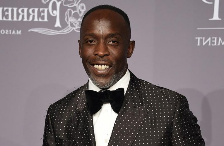 Michael K. Williams loses to 'The Crown' star and other 2021 Emmys snubs
