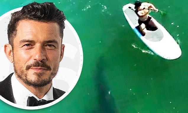 Orlando Bloom paddleboards with great white SHARK off Malibu coast