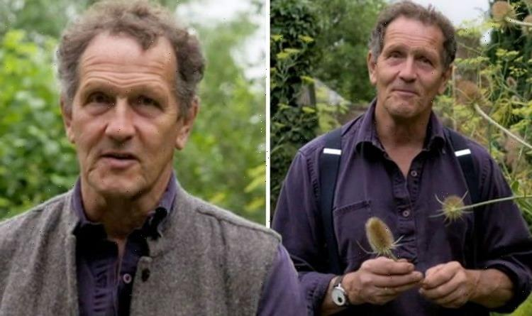 Thats the end of them Monty Don inundated with support as he posts 'devastating' update