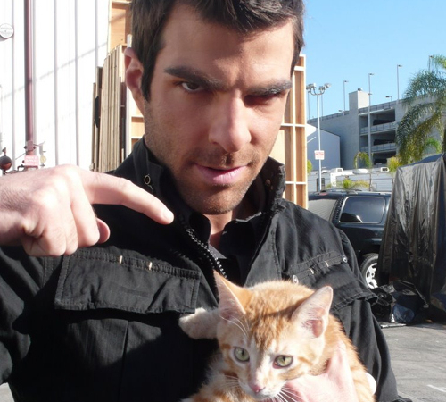Celebrities who love cats