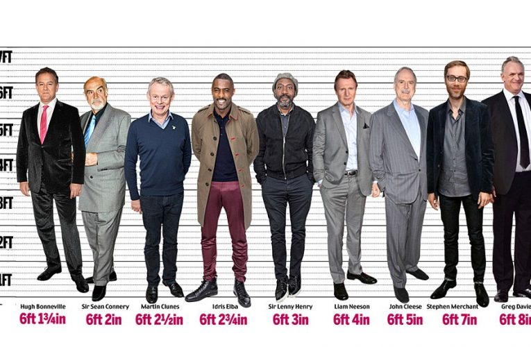 This list of the tallest men in the world includes actors, …